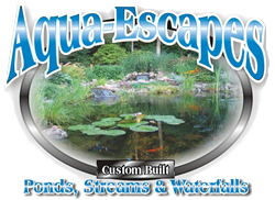 Atlantic | Oase Professional Contractor - Aqua Escapes - Waxhaw, NC